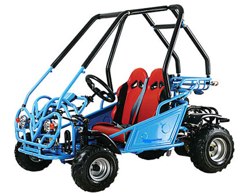 Go Cart 110 CC How to Build a Go Cart